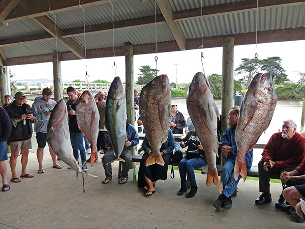 Waipu Boat & Fishing Club Labour Weekend competition 2017
